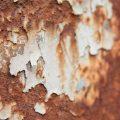 verlaten ruw rauw urbex vervallen www.ruwmantisch.nl ruwmantisch portret portretten portretfoto's fotografie fotosessie fotoshoot roest industrie macro