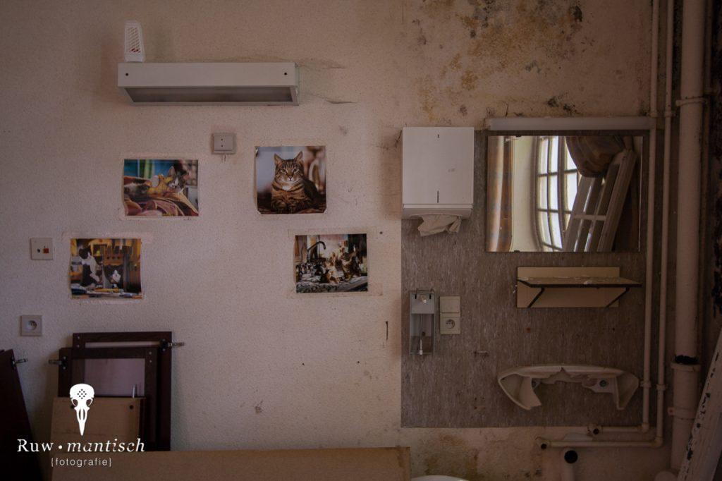 verlaten ruw rauw urbex vervallen www.ruwmantisch.nl ruwmantisch portret portretten portretfoto's fotografie fotosessie fotoshoot roest ziekenhuis sanatorium kamer katten