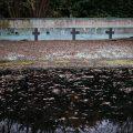 verlaten ruw rauw urbex vervallen www.ruwmantisch.nl ruwmantisch fotografie fotosessie fotoshoot zwembad