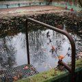 verlaten ruw rauw urbex vervallen www.ruwmantisch.nl ruwmantisch fotografie fotosessie fotoshoot zwembad trap afstapje